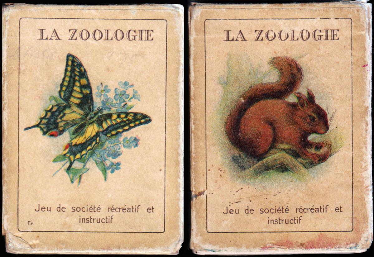 zoologie lmu haszi